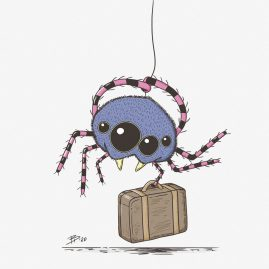 moving spider